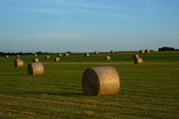 Agriculture & industrie