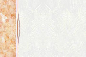 Arrière plan - Menu rétro à colonne et filigrane végétal