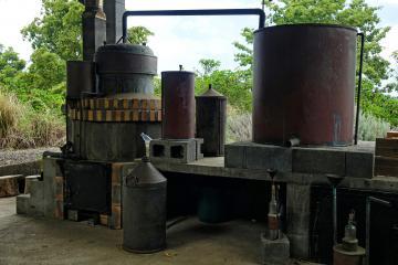 Distillerie artisanale pour les huiles essentielles - Ile de la Réunion