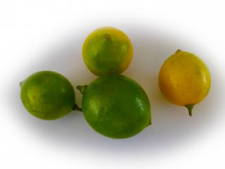 Citrons verts et jaunes