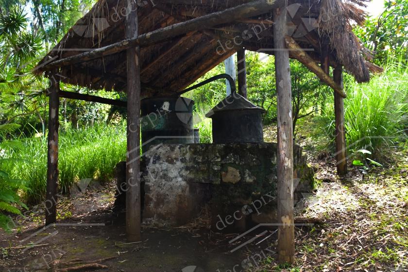 Alambic traditionnel pour la distillation des huiles essentielles - Ile de la Réunion