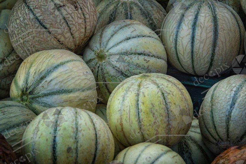 Melons à l'étal