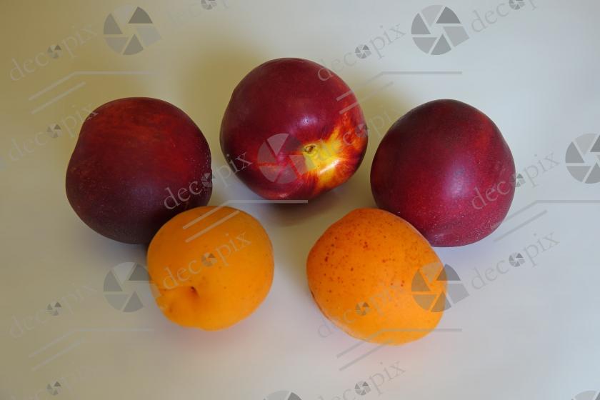 Nectarines et abricots sur fond clair