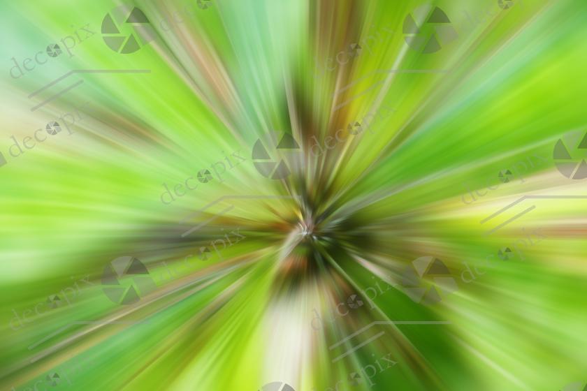 P1050337-rayonnement-vegetal-e