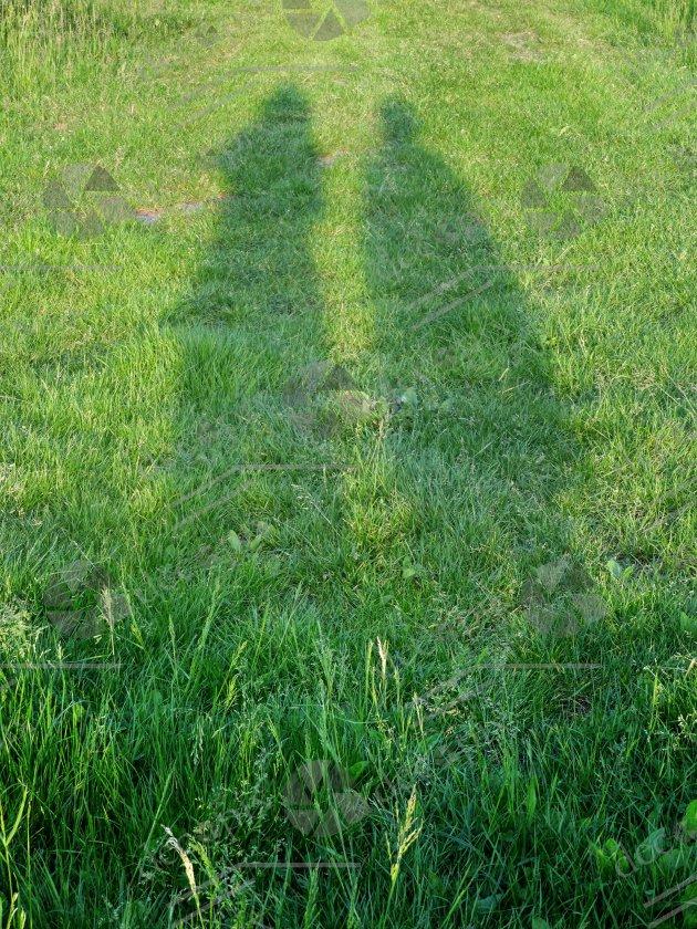 Ombres humaines étirées sur l'herbe au couchant