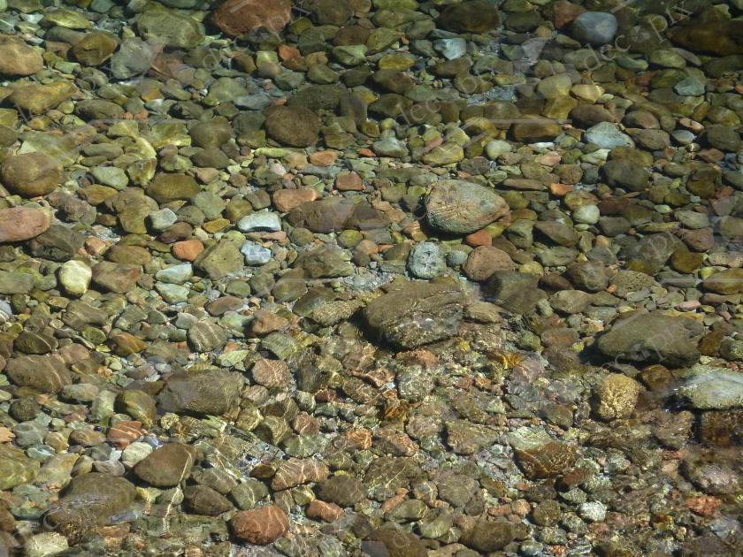 Transparence et brillance dans l'eau d'un bassin de cascade