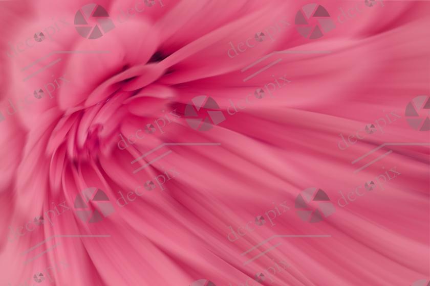 Arrière-plan floral - Dahlia