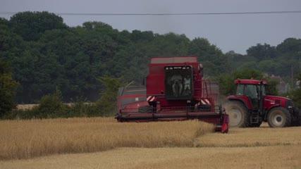 Vue de face d'une moissonneuse-batteuse fauchant les blés