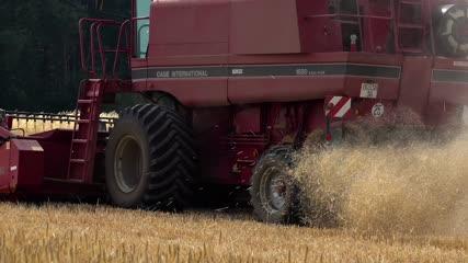 Rejets d'une moissonneuse-batteuse fauchant les blés